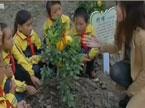 """浙江:小学办起""""开心农场"""" 在劳动中体验快乐"""