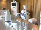 湖南醴陵釉下彩为世博添彩