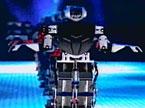 机器人《千手观音》